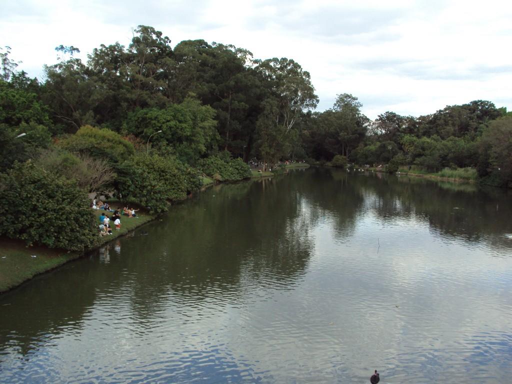 Essa foto eu tirei de uma das pontes, que tem um visual legal do parque. Foto: Marcelle Ribeiro