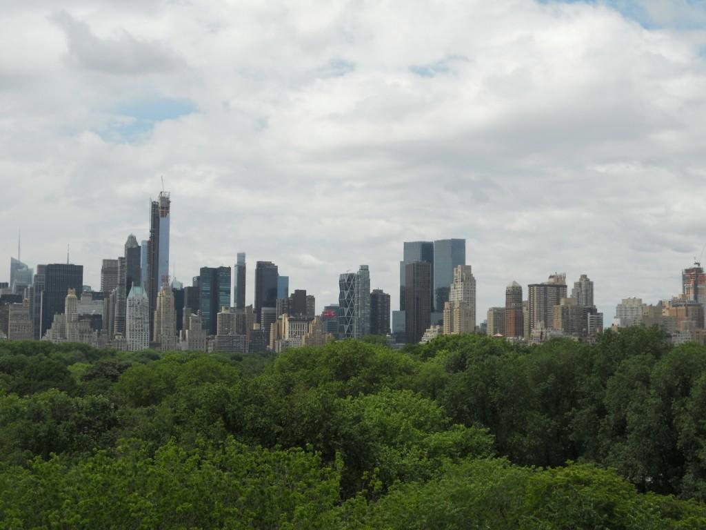 O Central Park visto do terraço do MET. Foto: Marcelle Ribeiro