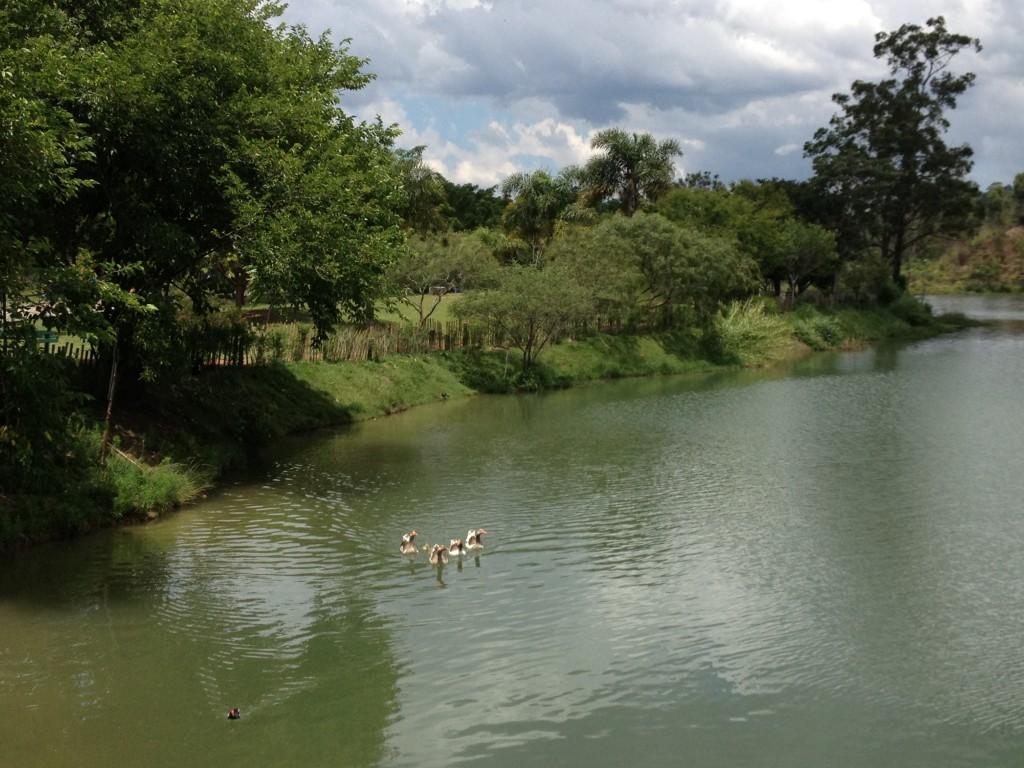 Parque do Lago Francisco Rizzo, em Embu das Artes. Foto: Marcelle Ribeiro
