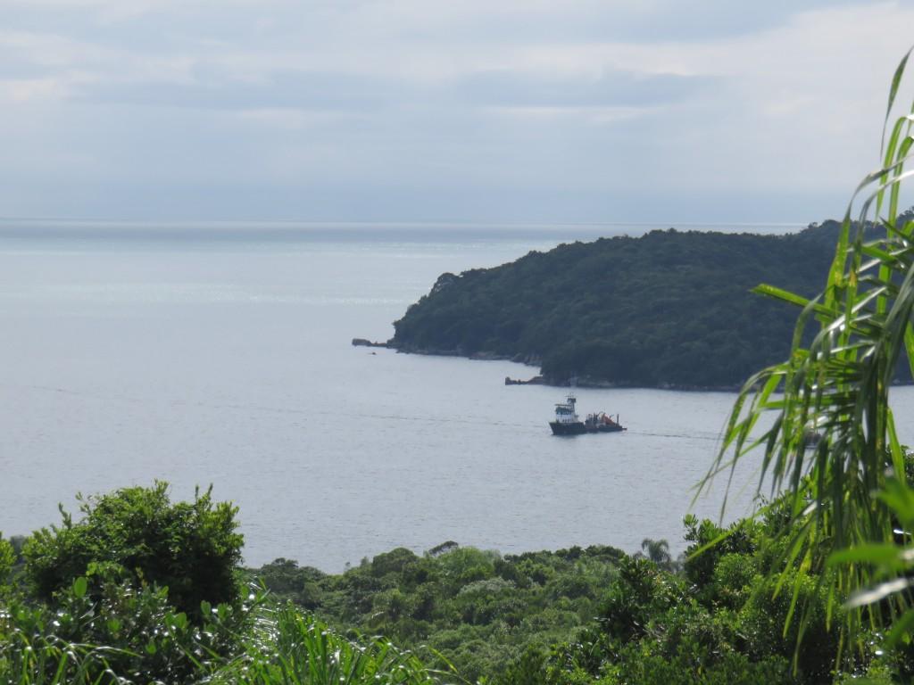 A vista da trilha da ilha de Porto Belo. Foto: Marcelle Ribeiro.