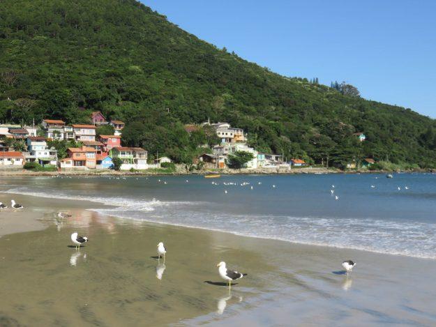 Praia Pântano do Sul
