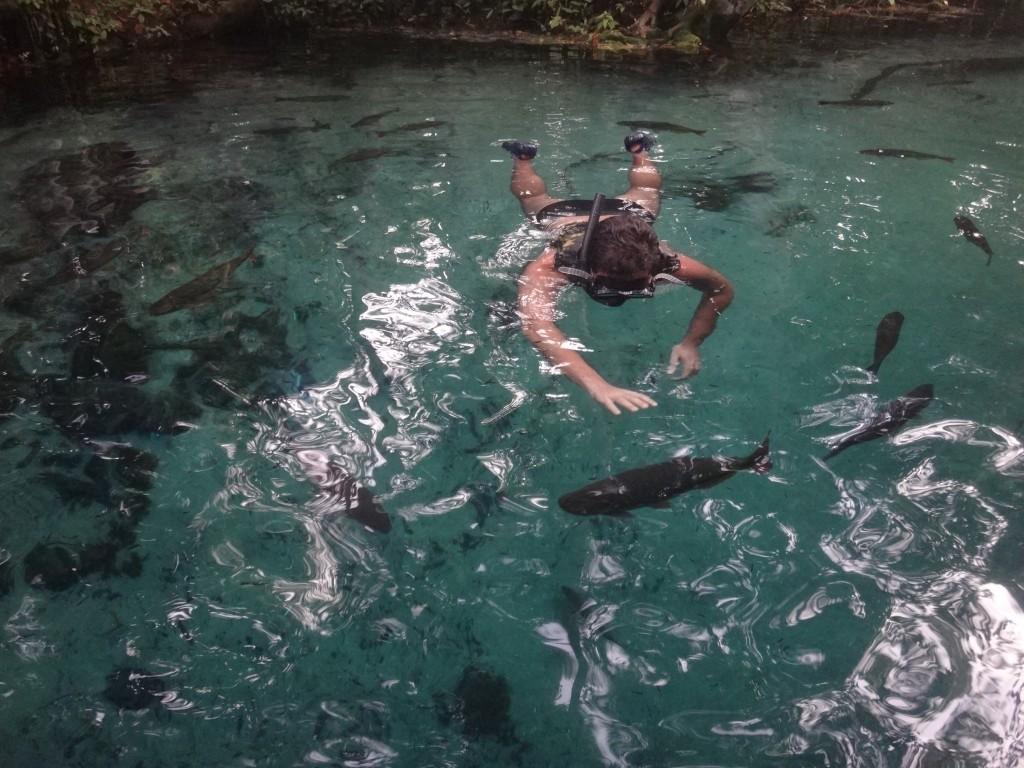 Flutuação no Aquário Encantado. Foto: Marcelle Ribeiro.