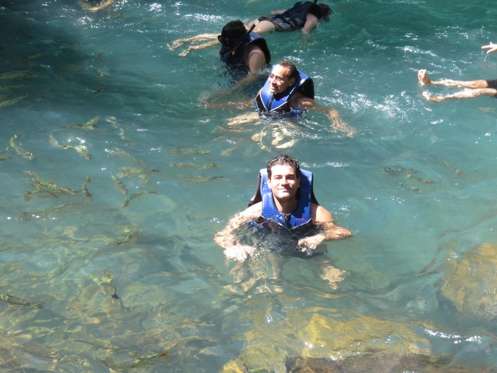 Peixes da Cachoeira da Serra Azul. Foto: Marcelle Ribeiro