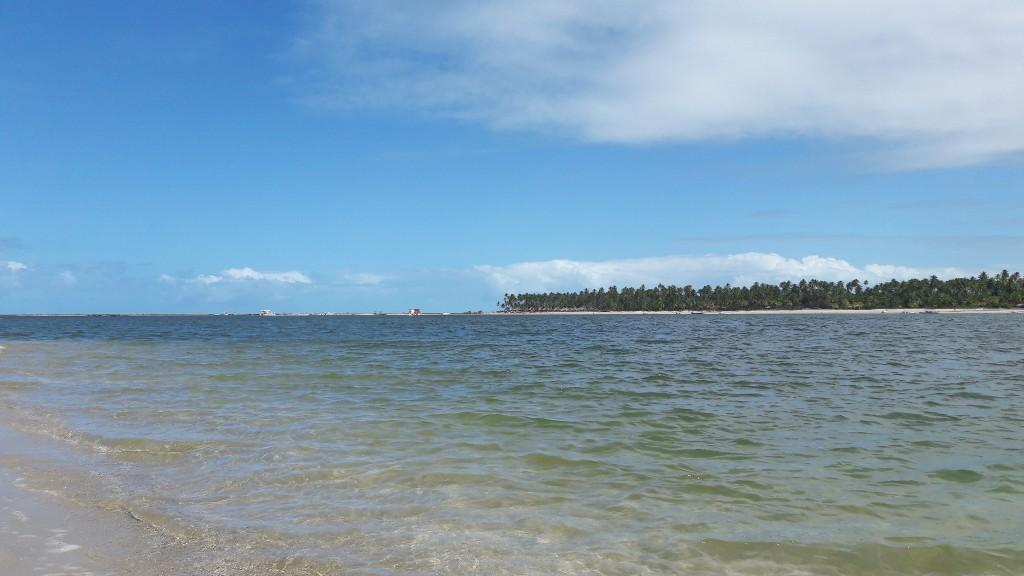 A praia dos Carneiros vista do banco de areia. Foto: Marcelle Ribeiro.
