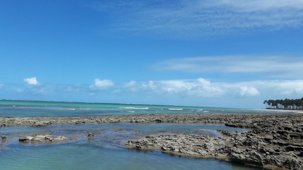 Piscinas naturais da Praia dos Carneiros. Foto: Marcelle Ribeiro.