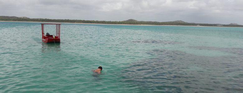 Passeio nas piscinas naturais de Alagoas? Temos!