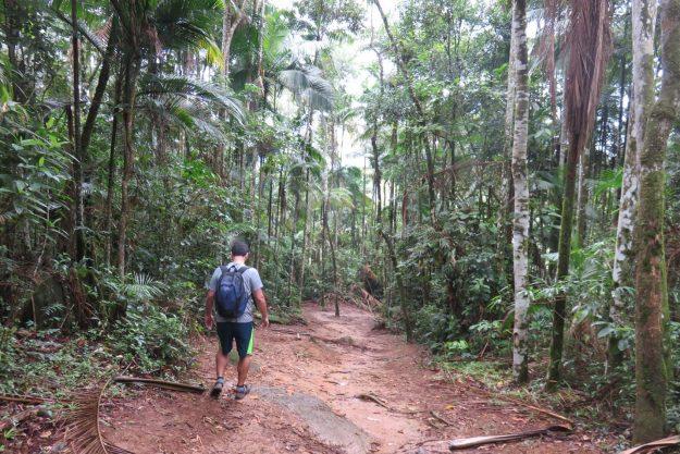 Trilha para o Poço das Esmeraldas, na Serrinha do Alambari. F
