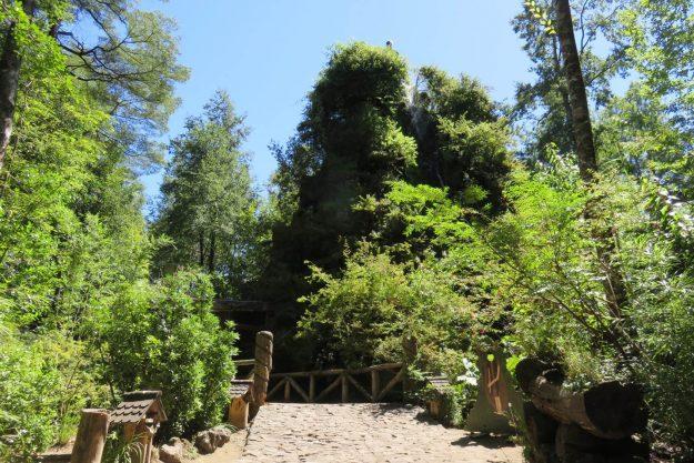 Hotel Montanha Mágica, em Huilo Huilo